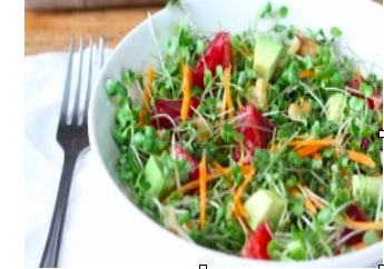 Microgreen Summer Salad