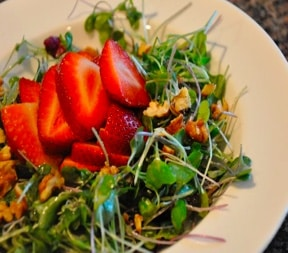 Kid-Friendly Strawberry Microgreen Salad